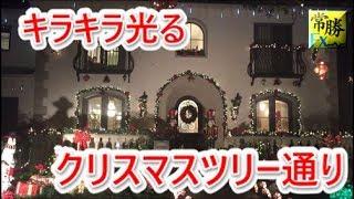 hasegawa 20180614