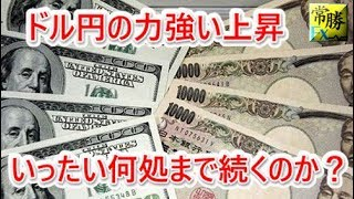 hasegawa 20180730