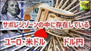 hasegawa 20190119